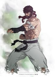 Street Fighter V - Ryu by BrokenNoah