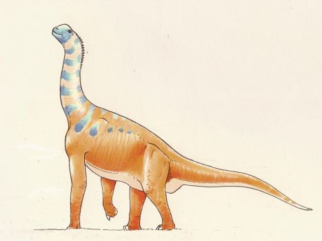 Atlasaurus by Andrewsarchus89