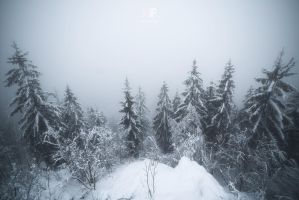 Foggy look-out by mescamesh