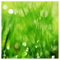 Abstract grass by aleania