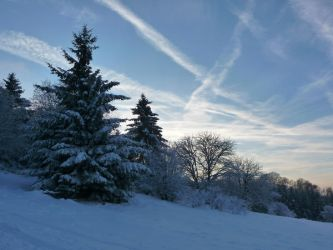 a winters day IV by mimose-stock