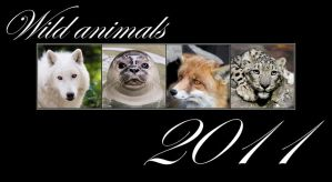 Animals calendar 2011 FOR FREE by woxys