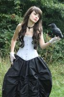 Raven III by alisab-stock