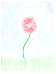 Puff Ball Flower by shaybee