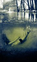 Taking a dip by Abnormal-Child