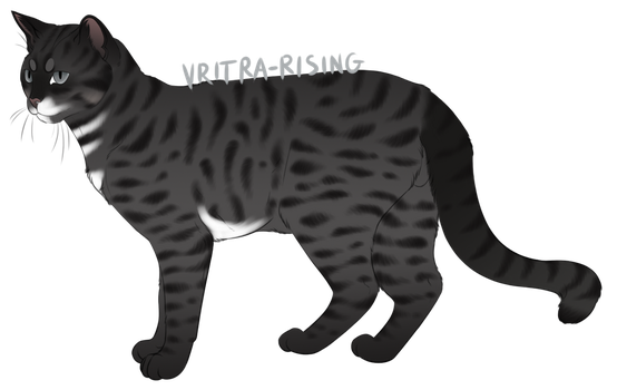 Cat adopt | Open by Vritra-Rising