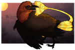 Firefly Portrait Small Watermark by Weeburdoodles