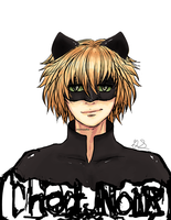 Chat noir by MomoAiko