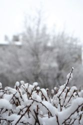 Winter in the city by Photograficzna