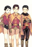 Robins by Lverin
