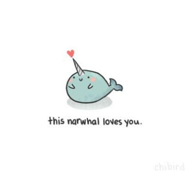 Love Narwhal by camilladerrico