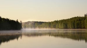 Wonderful morning by KariLiimatainen