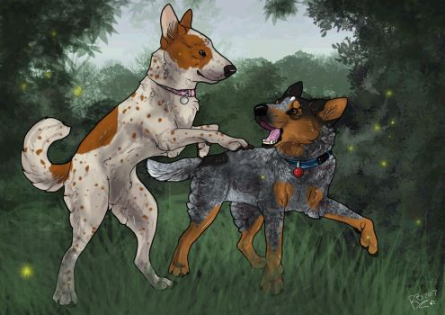 Commission: Heeler playtime by SheWolfey