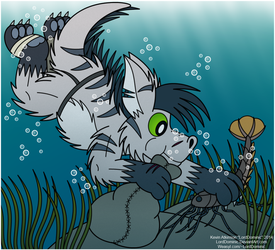 Collecting Crustaceans by LordDominic