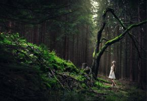 forest is an endless source of inspiration by baravavrova