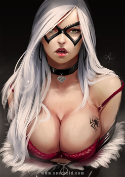 Sexy Black Cat by SourAcid