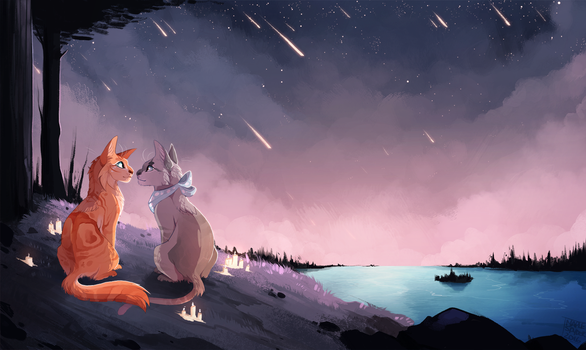 Stargazing by MapleSpyder