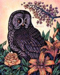 Grey Owl At Sunset by AngelaRizza