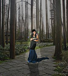 Enchanted Forest by TarielOfLorien