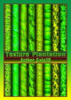Texture Plantation. by Gala3d