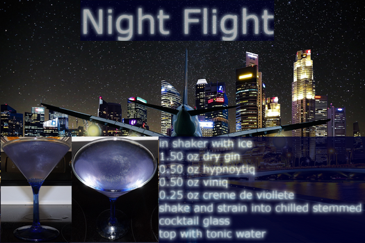 NightFlight by Van-Dunkelschreiber