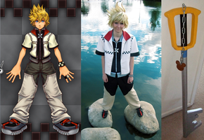 CCs - Kingdom Hearts 2 Roxas by wingedlight