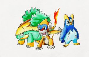 Pokemon Generation 4: Sinnoh Starter First Evolve