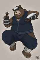 Ninja bear by ShinodaHamazaki