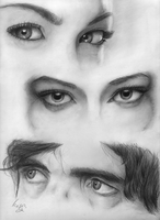 Eye Study #2 - (Can you guess them all?) by Iceey23