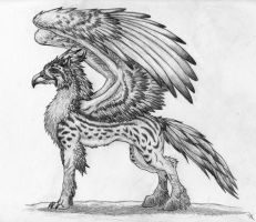 Guardavin Gryphon by Elusive-Element