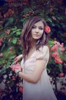 Wild roses V by onechristina