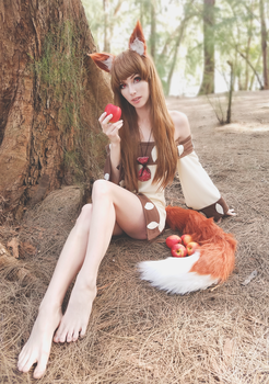 Holo - Woods by MeganCoffey