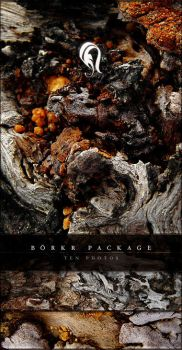 Package - Borkr - 7 by resurgere