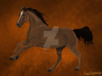 Brown Horse by Unicorn-Woodland