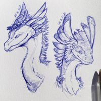 Flight Rising dragons by x-Scorchmark-x