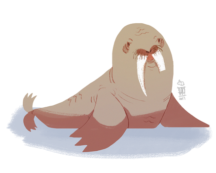 Walrus by PatchLamb