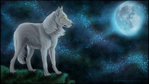 The white wolf + Video by NathalieNova