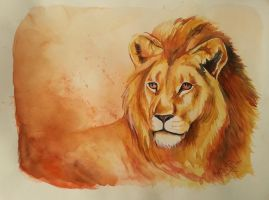 Lion by ZiskaJa