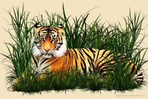 Save the Tiger by GreenVoice