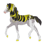 N2651 Padro Foal Design for DecemberSnowStable by casinuba