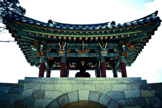 Korean Temple Gate by PtiNono