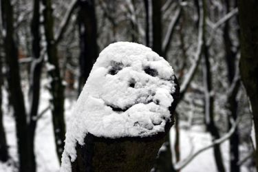 Snow Face by Naturesview