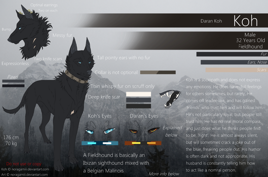 Koh Ref 2017 (NEW) by Noragamiii