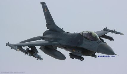 F-16C Shaw AFB by AviatorAndy