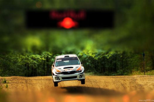 WRC Subaru (tilt shift) by craft666