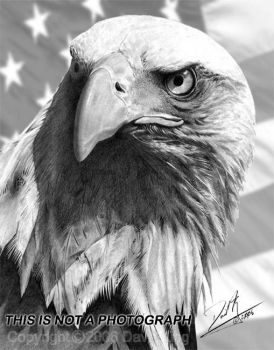 American Eagle and Flag by superchickenn123