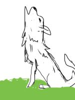 Wolf by Iissick