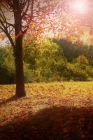 Premade Nature Background by Sannalee01