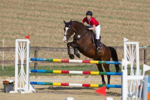Level 5 Showjumping - L-Springen 36 by LuDa-Stock