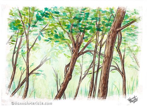 Watercolor Woods by HannahMericle